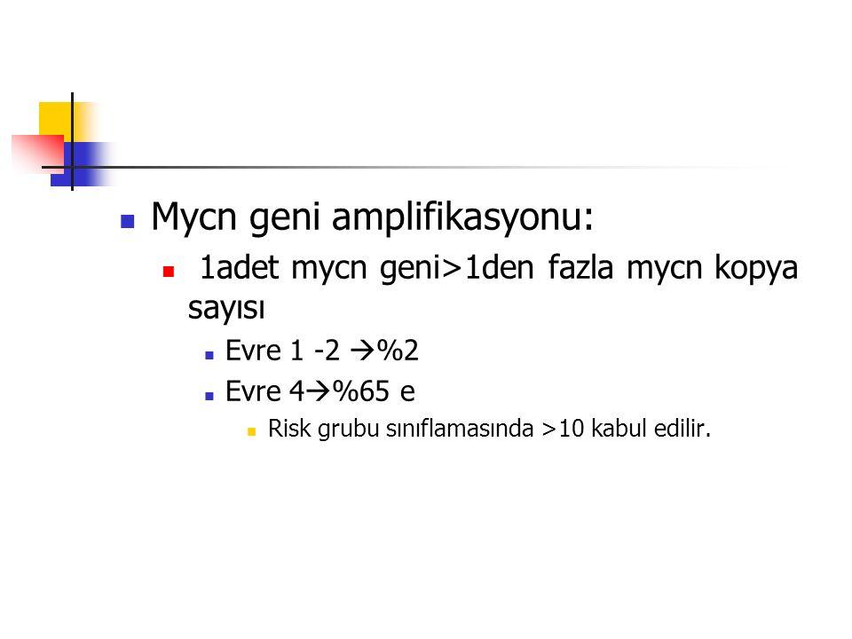 Mycn geni amplifikasyonu: