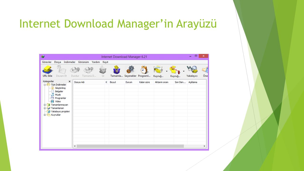 Internet Download Manager'in Arayüzü