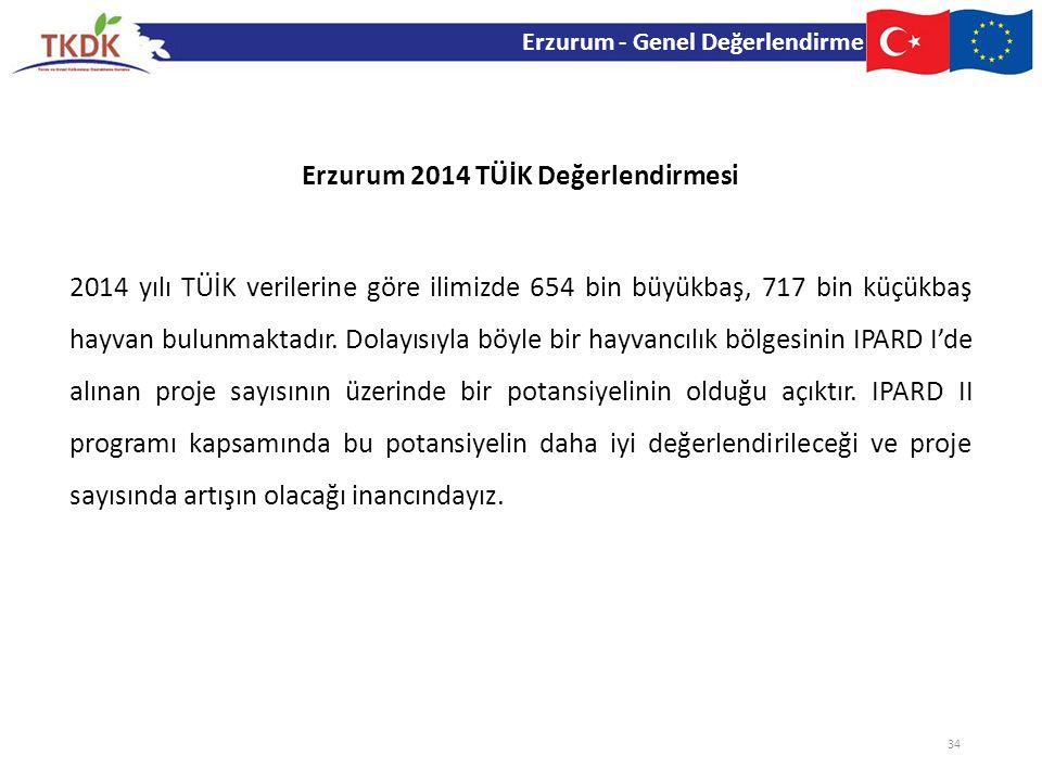 Erzurum 2014 TÜİK Değerlendirmesi