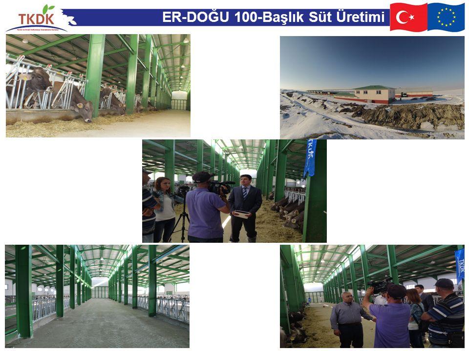 ER-DOĞU 100-Başlık Süt Üretimi