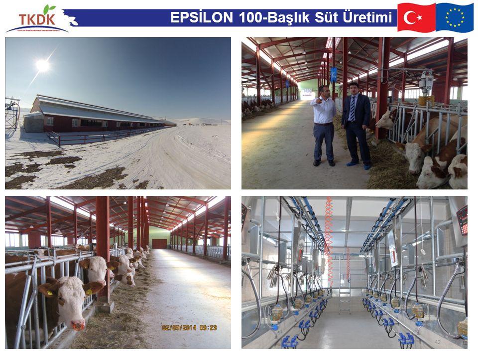 EPSİLON 100-Başlık Süt Üretimi