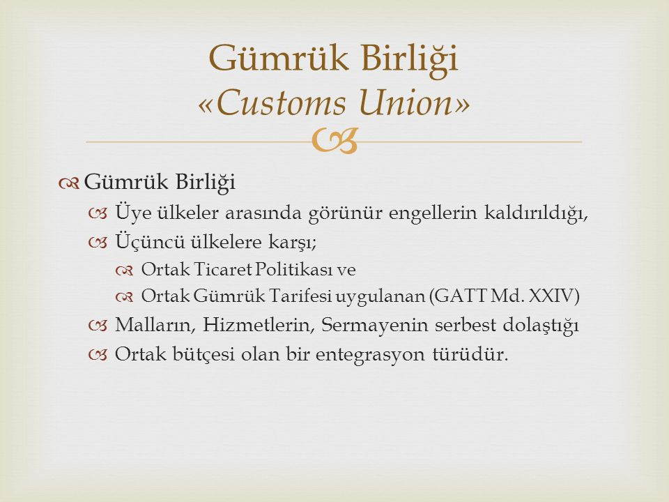 Gümrük Birliği «Customs Union»