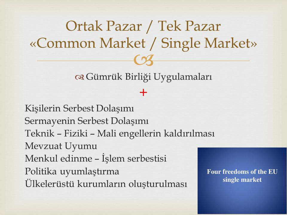 Ortak Pazar / Tek Pazar «Common Market / Single Market»