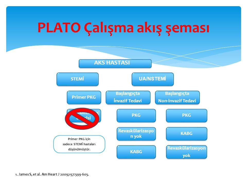 PLATO Çalışma akış şeması