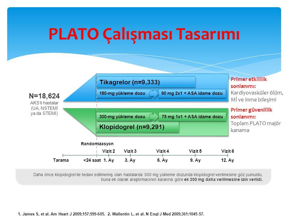 PLATO Çalışması Tasarımı