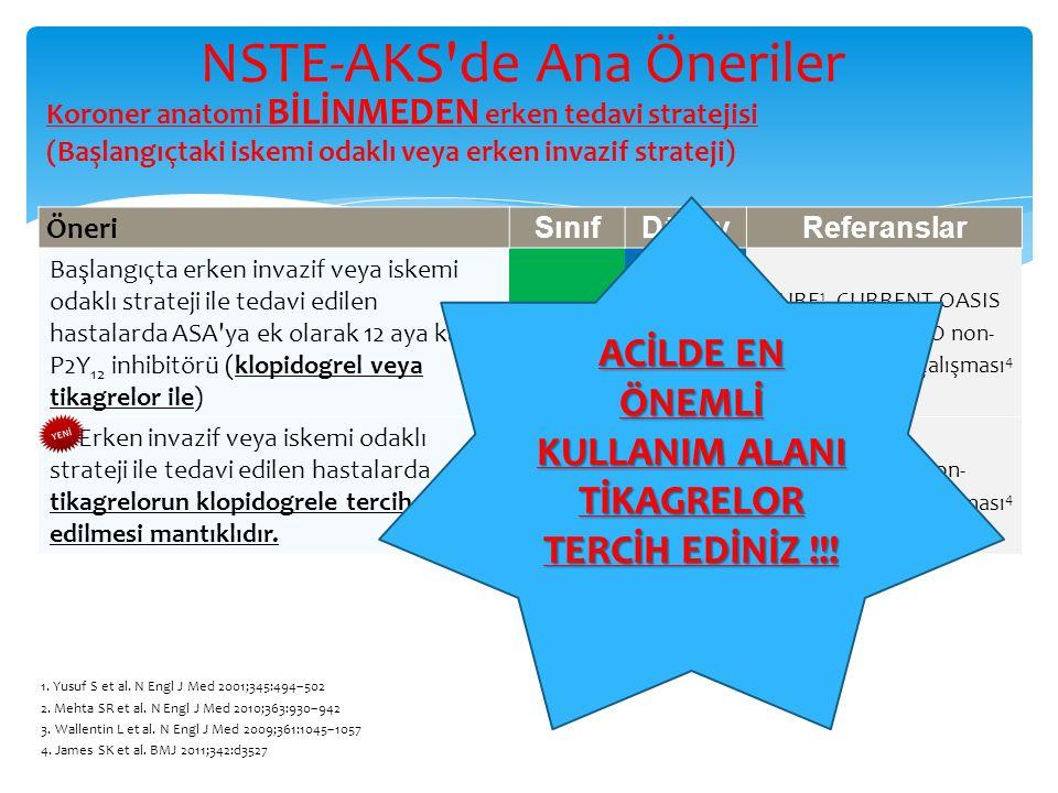 NSTE-AKS de Ana Öneriler