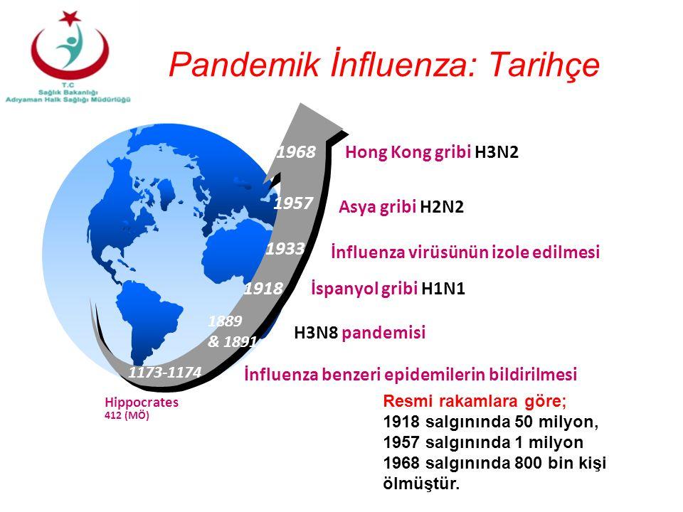 Pandemik İnfluenza: Tarihçe