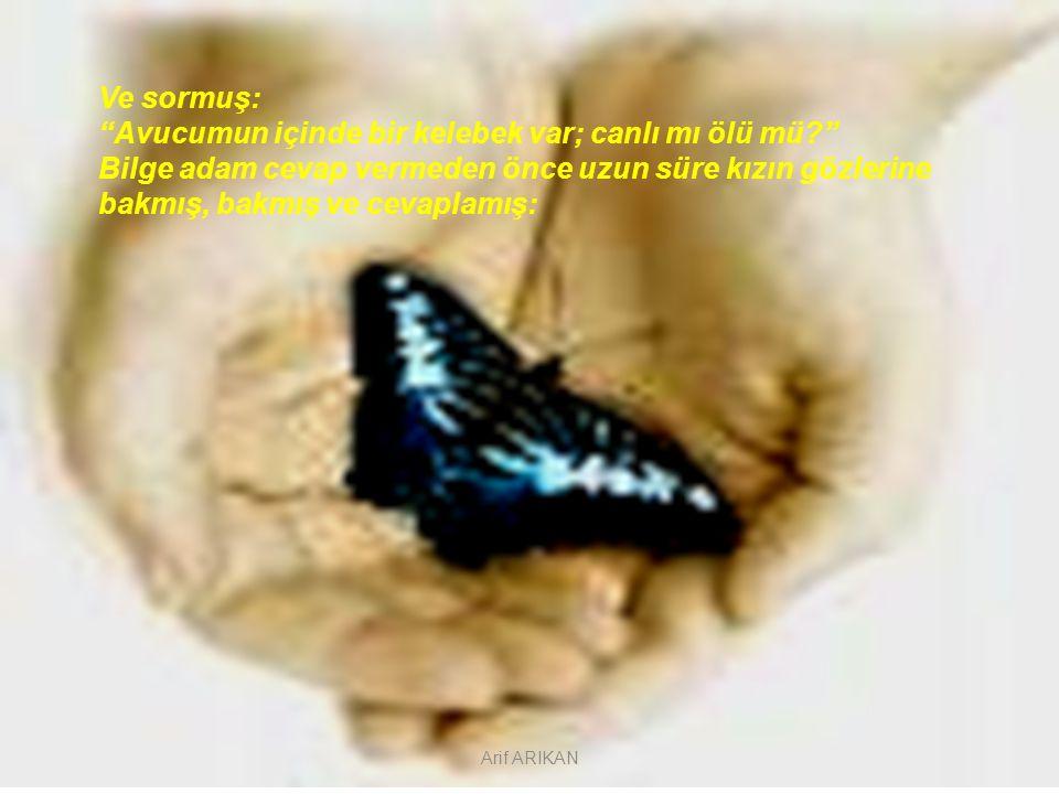 Avucumun içinde bir kelebek var; canlı mı ölü mü