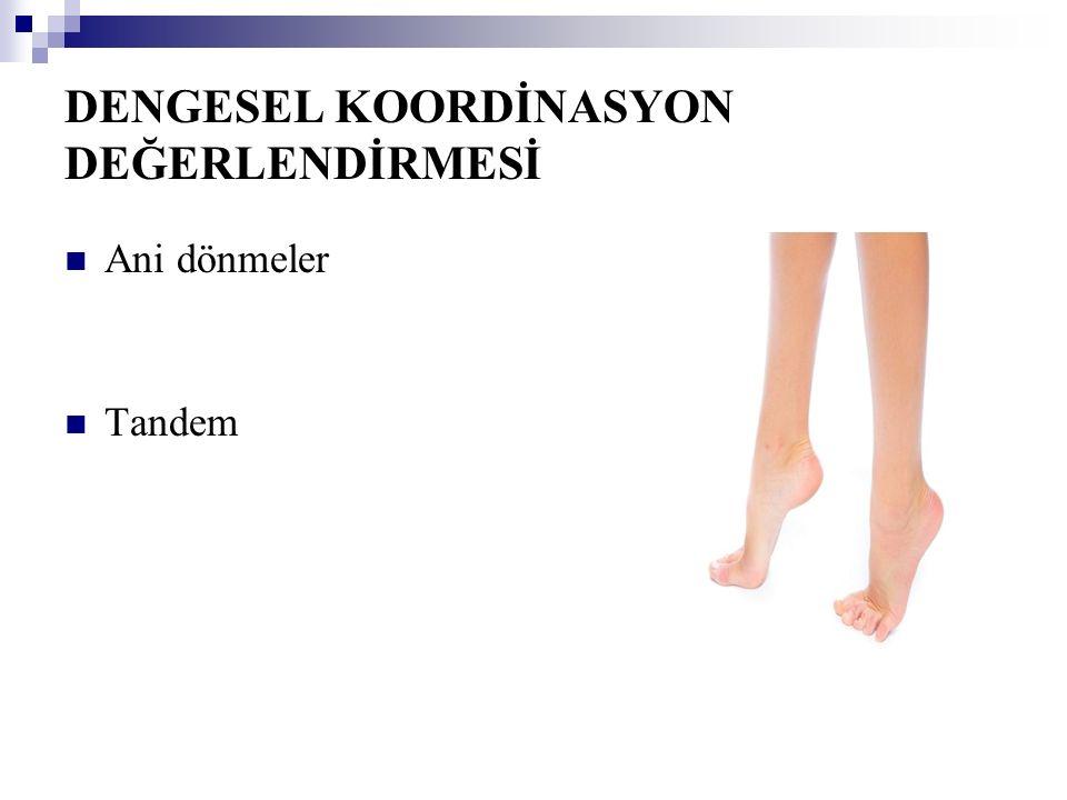 DENGESEL KOORDİNASYON DEĞERLENDİRMESİ