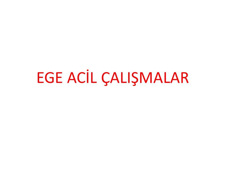 EGE ACİL ÇALIŞMALAR