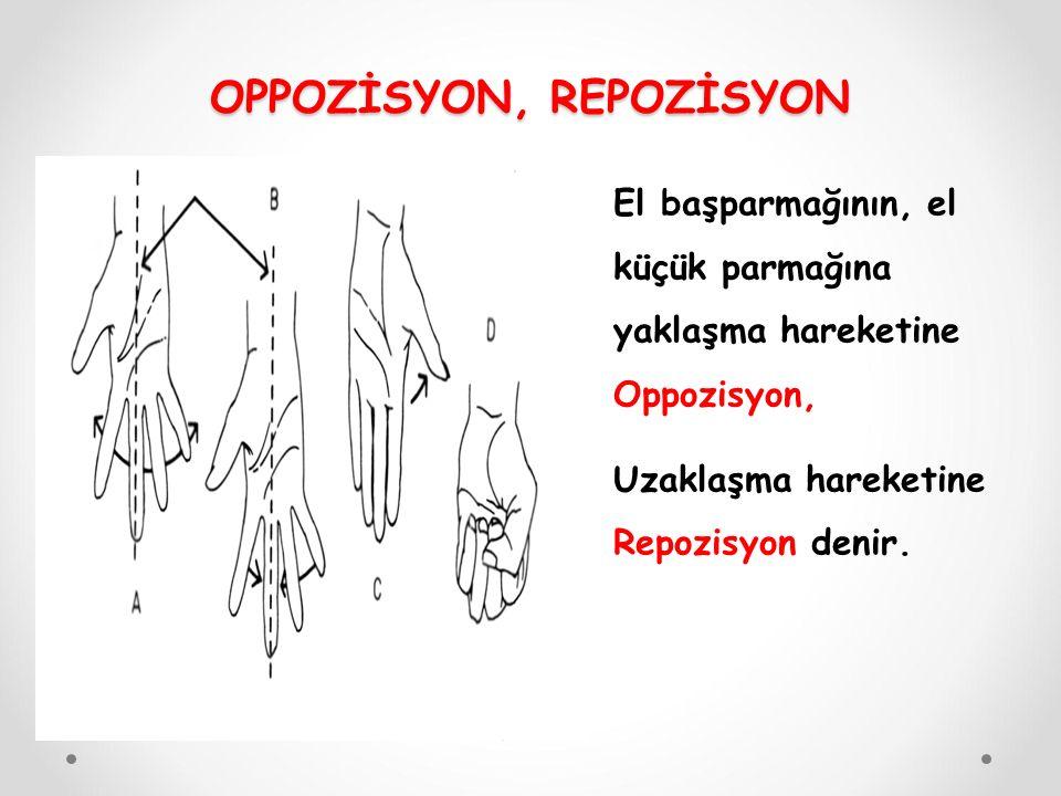 OPPOZİSYON, REPOZİSYON