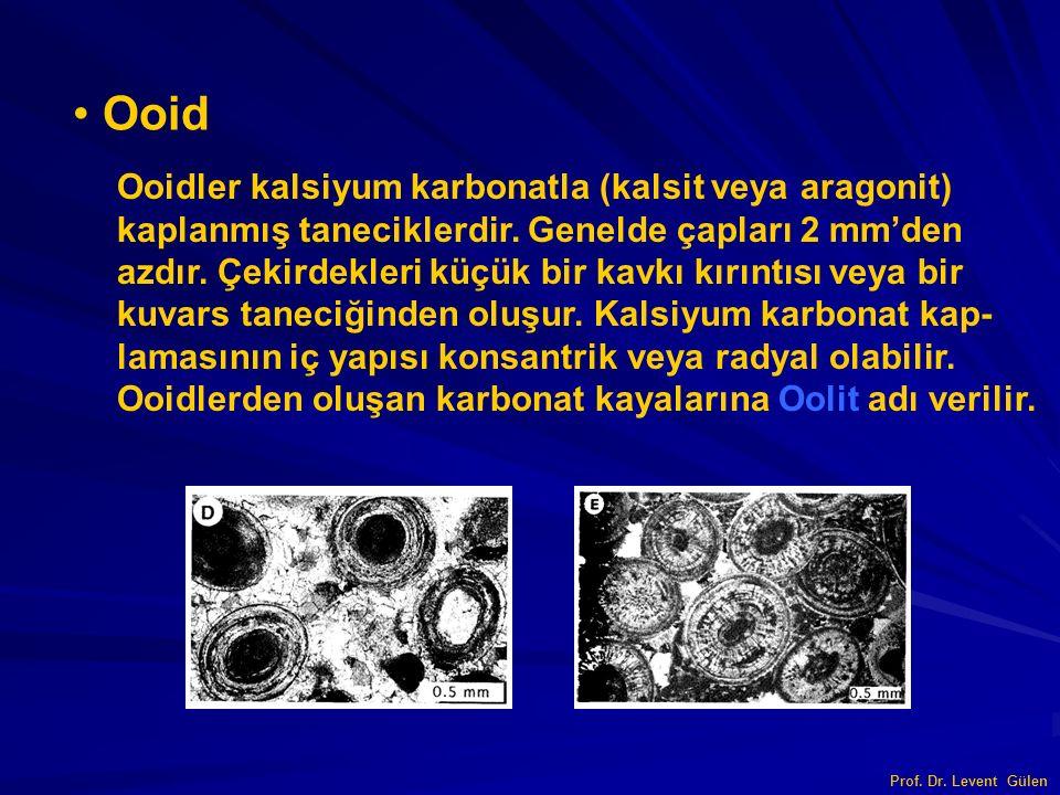 Ooid Ooidler kalsiyum karbonatla (kalsit veya aragonit)