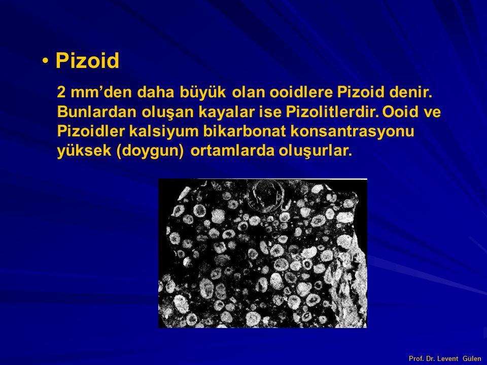 Pizoid 2 mm'den daha büyük olan ooidlere Pizoid denir.