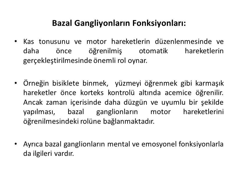 Bazal Gangliyonların Fonksiyonları:
