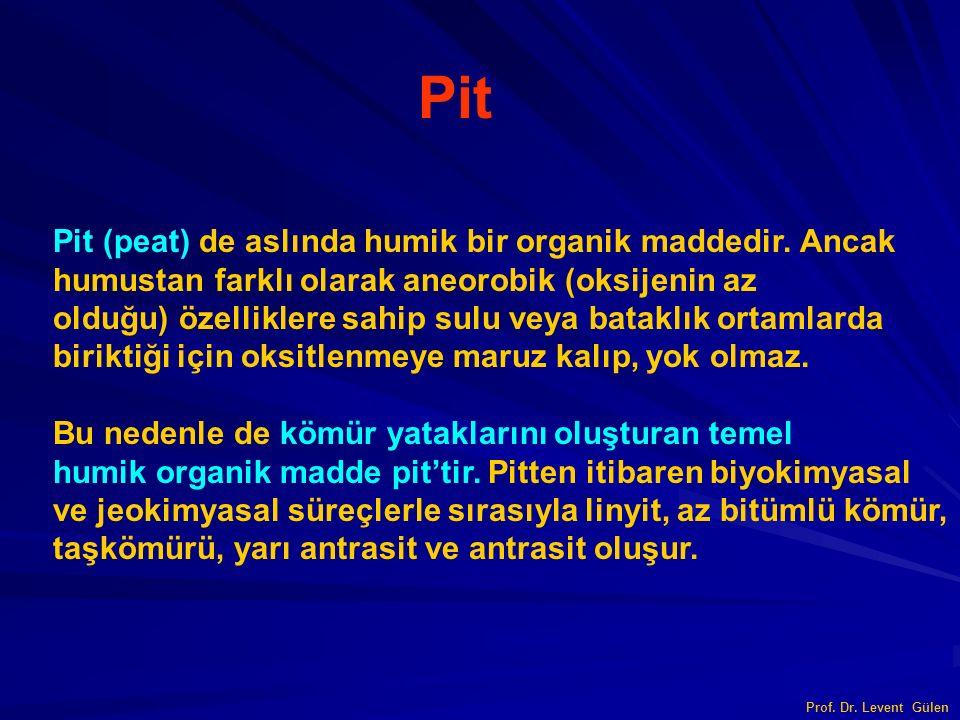 Pit Pit (peat) de aslında humik bir organik maddedir. Ancak