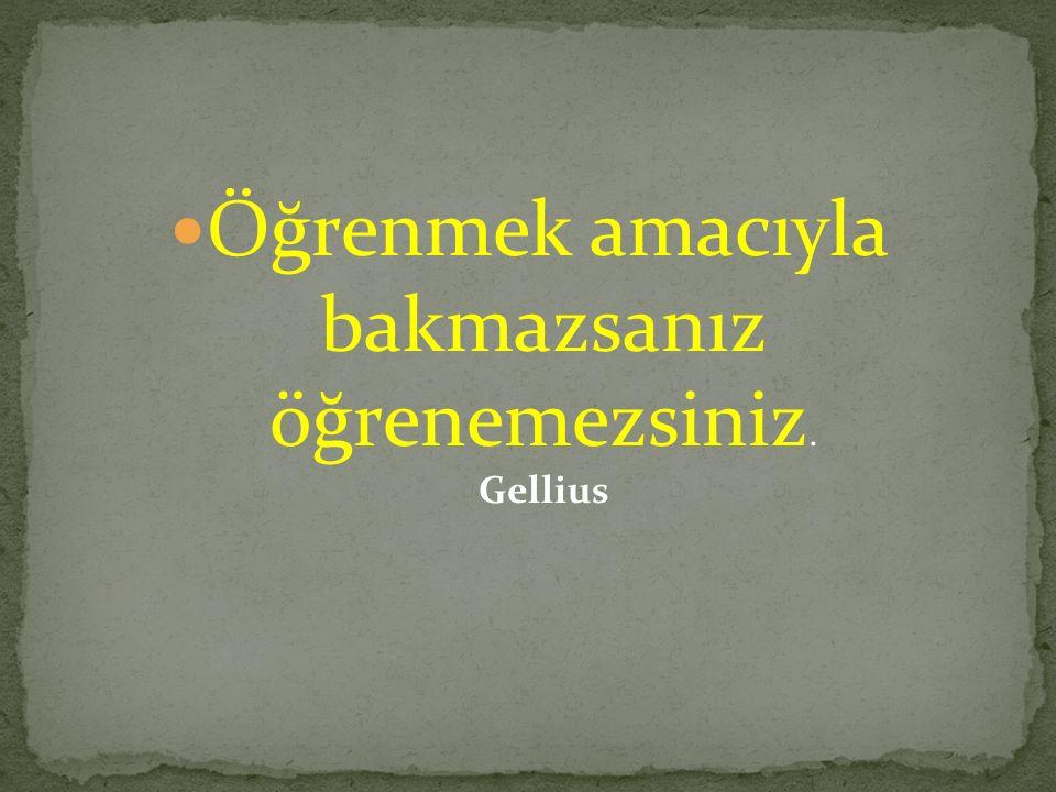 Öğrenmek amacıyla bakmazsanız öğrenemezsiniz. Gellius