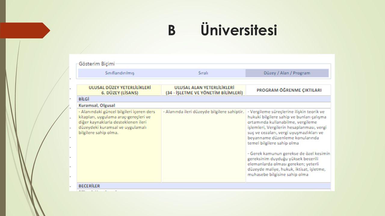 B Üniversitesi