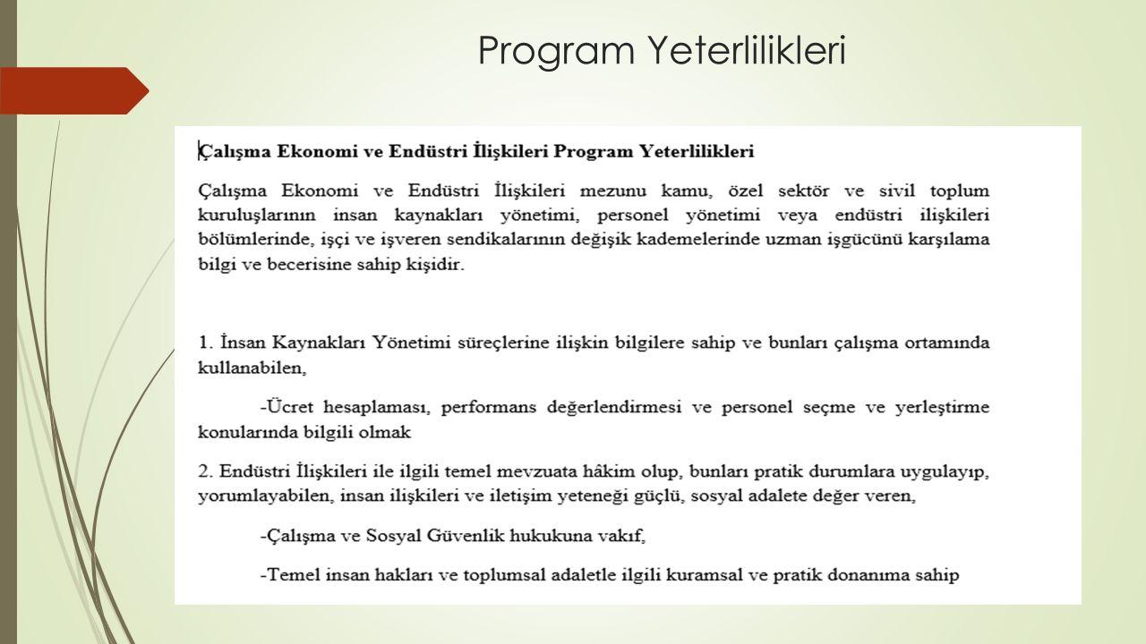 Program Yeterlilikleri