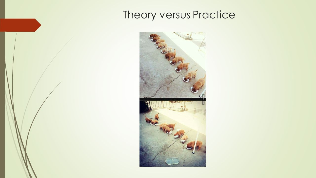 Theory versus Practice