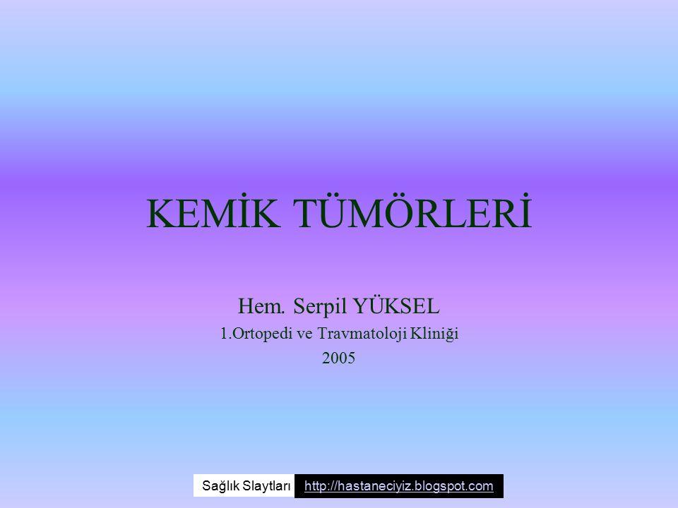 Hem. Serpil YÜKSEL 1.Ortopedi ve Travmatoloji Kliniği 2005