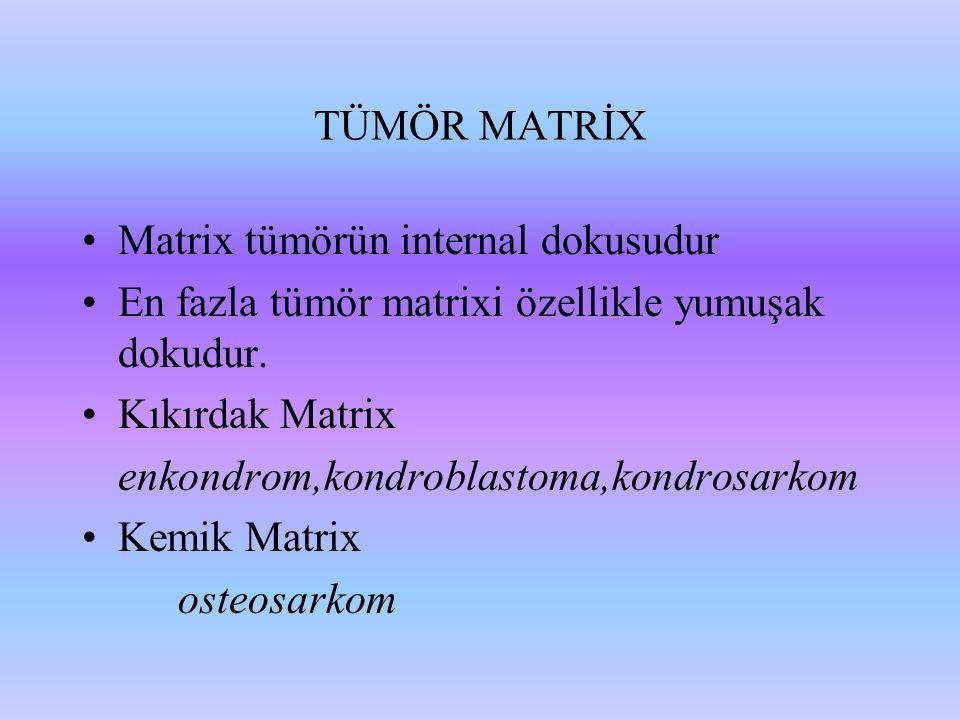 TÜMÖR MATRİX Matrix tümörün internal dokusudur. En fazla tümör matrixi özellikle yumuşak dokudur. Kıkırdak Matrix.