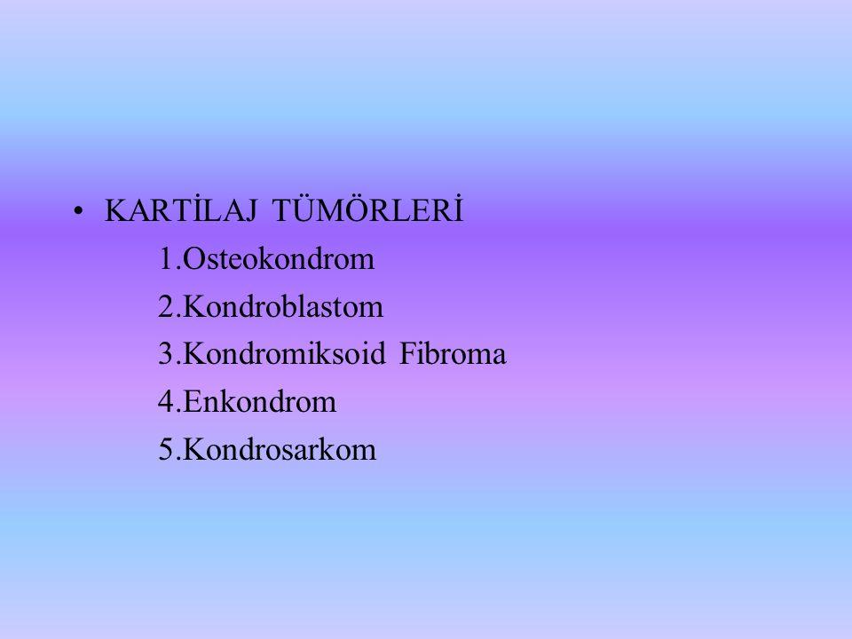 KARTİLAJ TÜMÖRLERİ 1.Osteokondrom. 2.Kondroblastom.