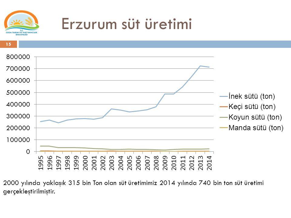 Erzurum süt üretimi 2000 yılında yaklaşık 315 bin Ton olan süt üretimimiz 2014 yılında 740 bin ton süt üretimi gerçekleştirilmiştir.
