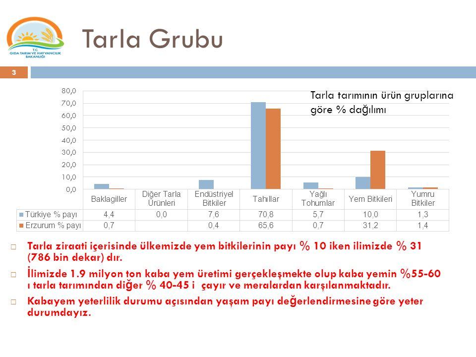 Tarla Grubu Tarla tarımının ürün gruplarına göre % dağılımı