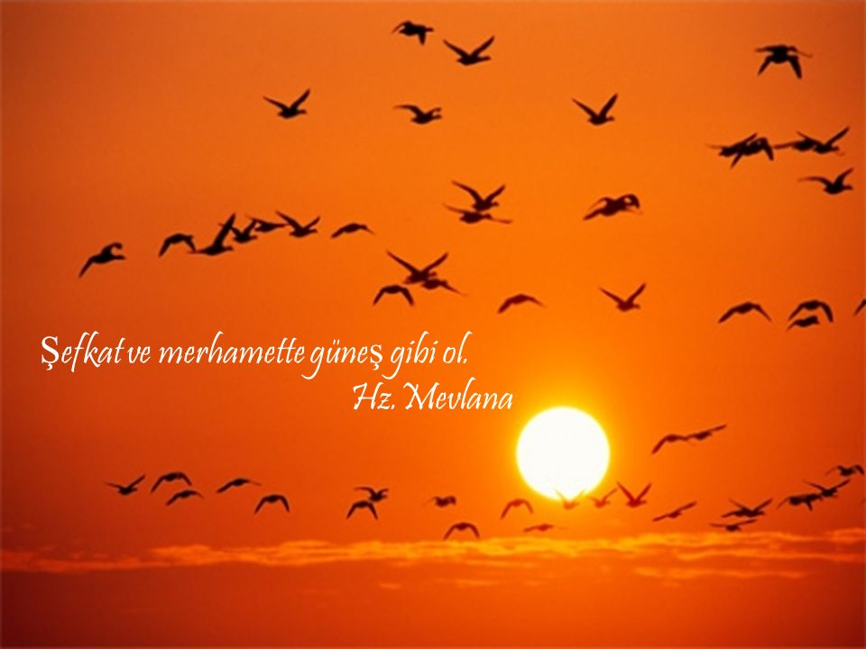 Şefkat ve merhamette güneş gibi ol. Hz.Mevlana