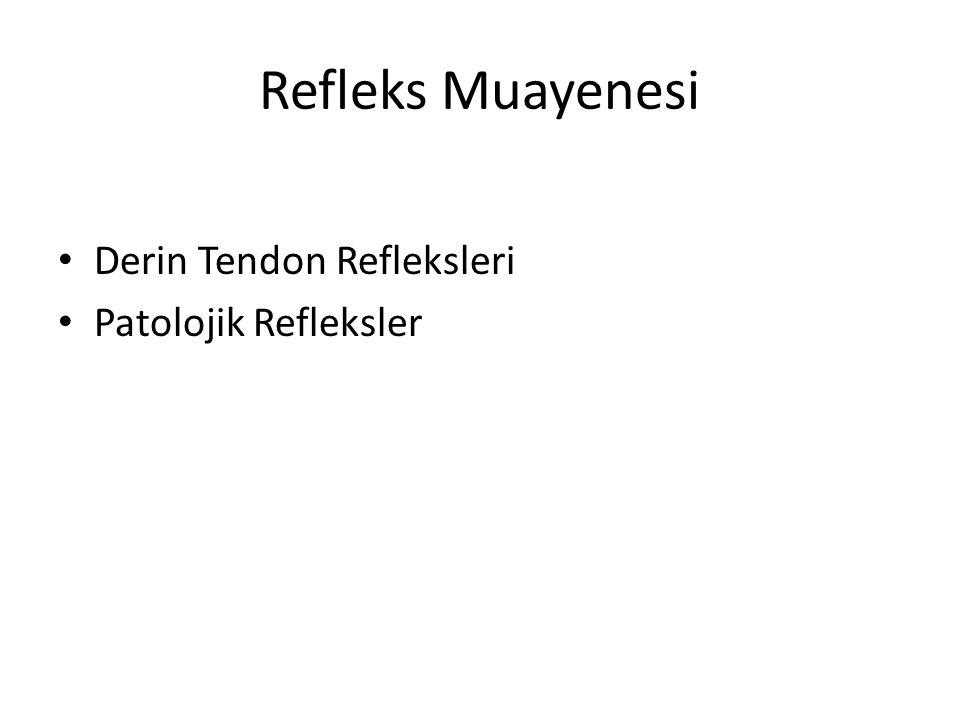 Refleks Muayenesi Derin Tendon Refleksleri Patolojik Refleksler