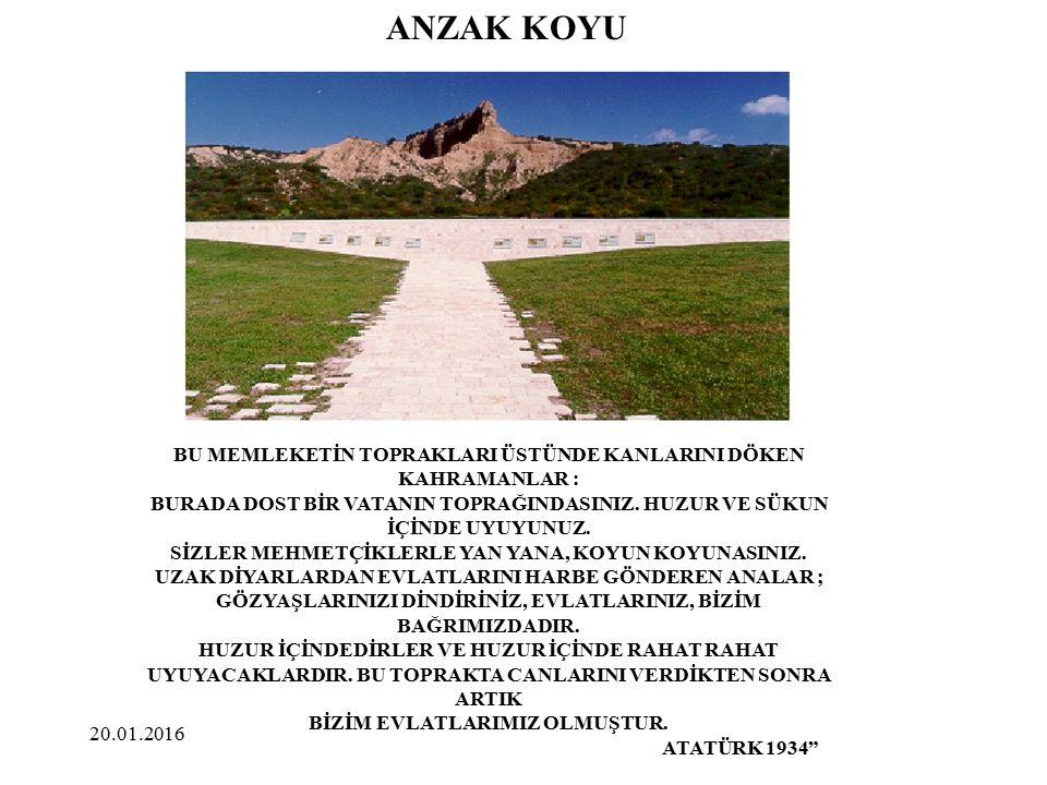 ANZAK KOYU