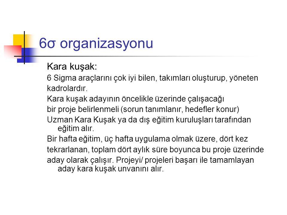 6σ organizasyonu Kara kuşak: