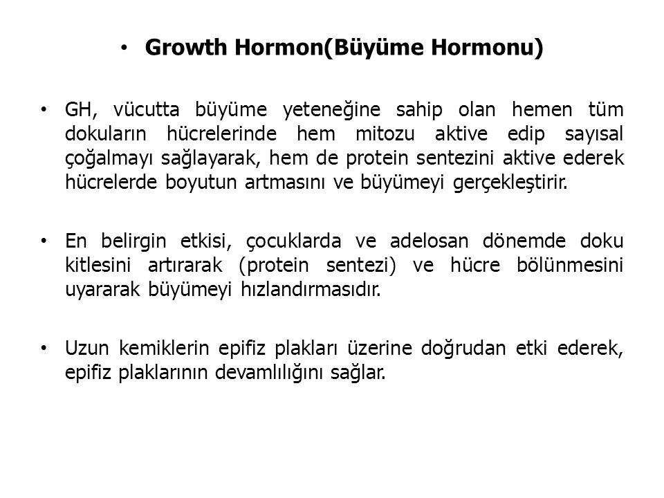Growth Hormon(Büyüme Hormonu)