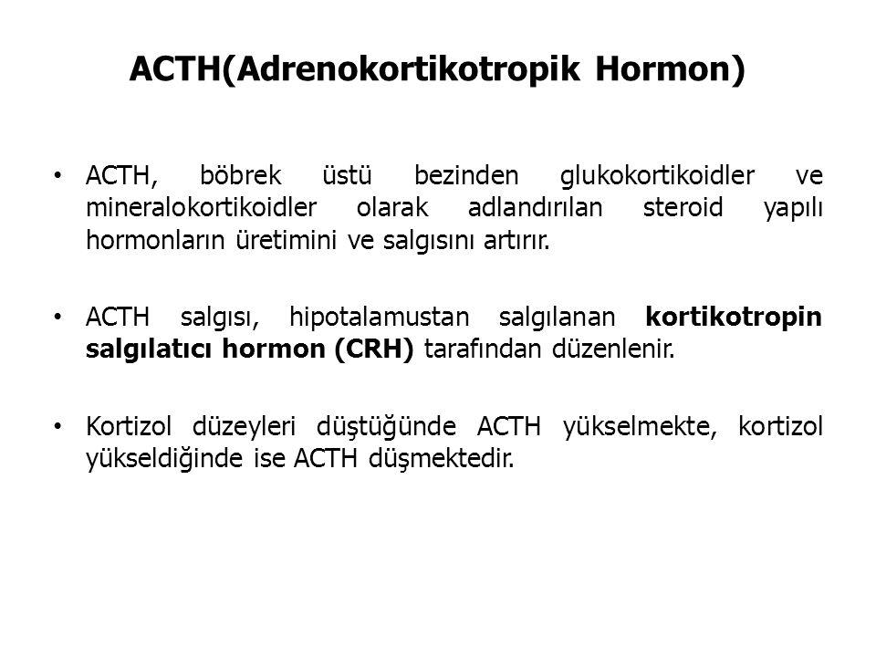 ACTH(Adrenokortikotropik Hormon)