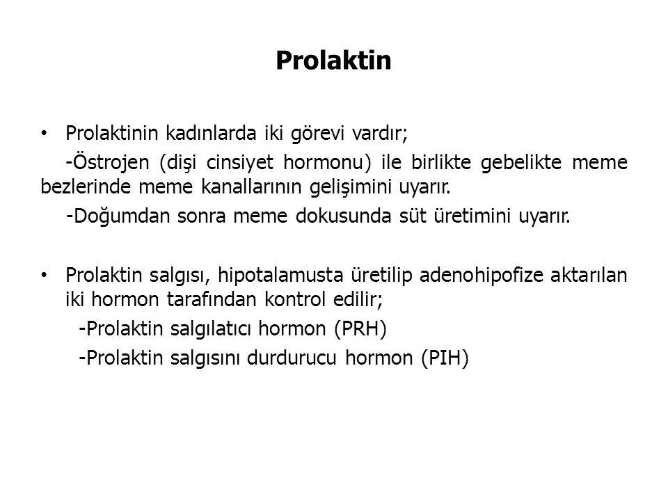 Prolaktin Prolaktinin kadınlarda iki görevi vardır;