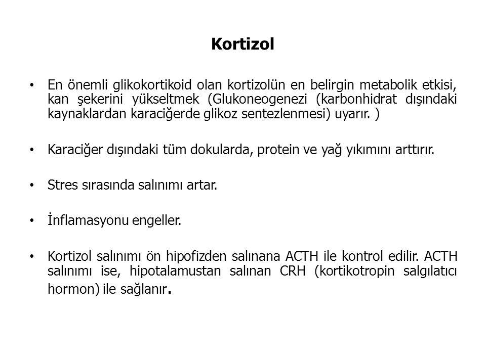 Kortizol