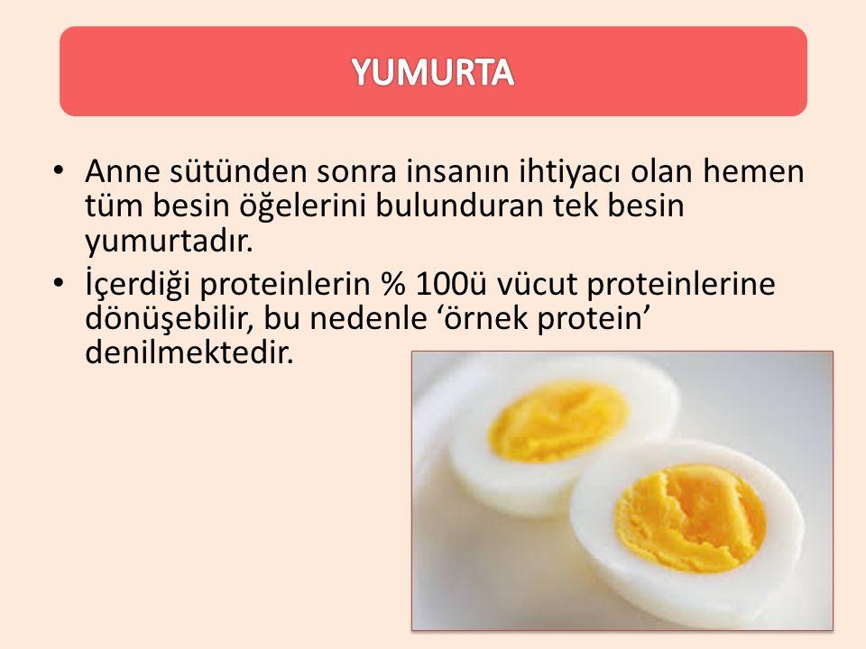 YUMURTA Anne sütünden sonra insanın ihtiyacı olan hemen tüm besin öğelerini bulunduran tek besin yumurtadır.