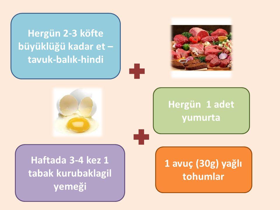 Hergün 2-3 köfte büyüklüğü kadar et –tavuk-balık-hindi