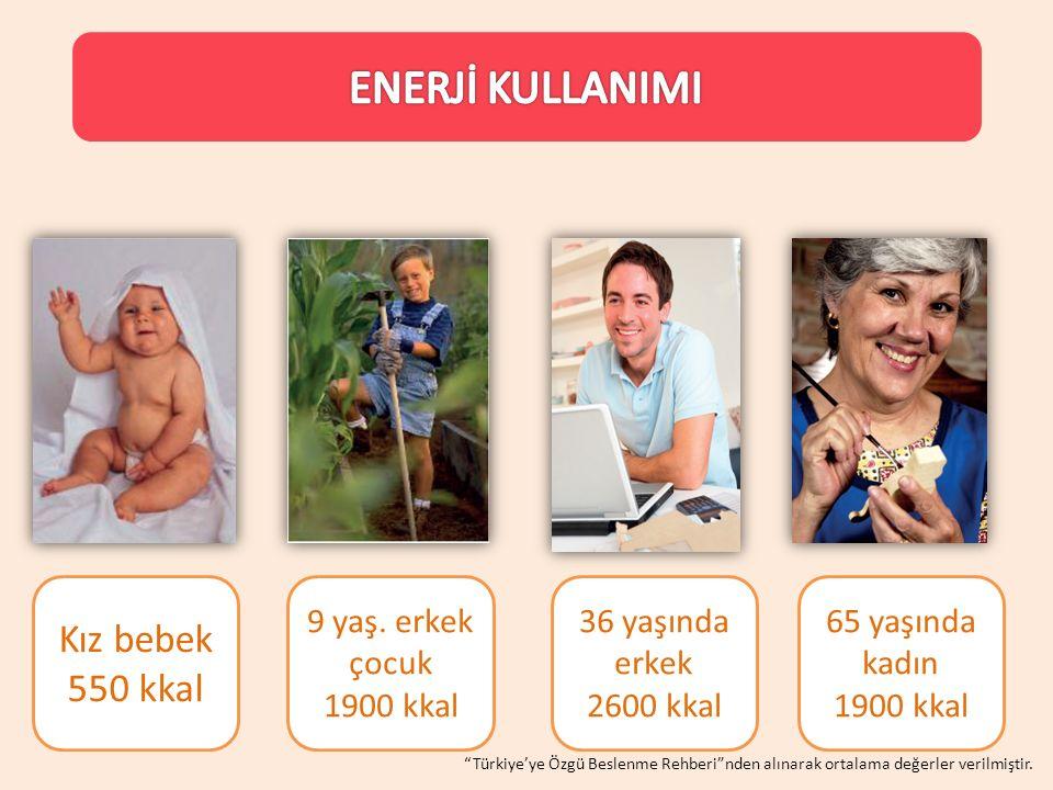 ENERJİ KULLANIMI Kız bebek 550 kkal 9 yaş. erkek çocuk 1900 kkal