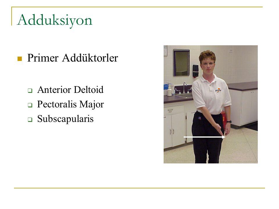 Adduksiyon Primer Addüktorler Anterior Deltoid Pectoralis Major