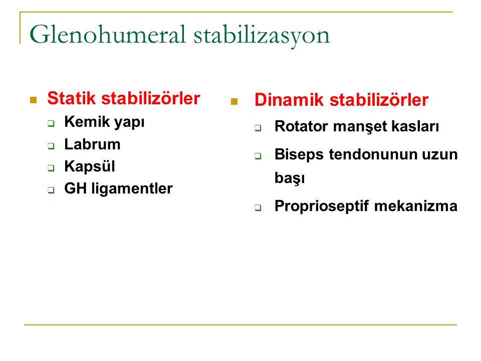 Glenohumeral stabilizasyon