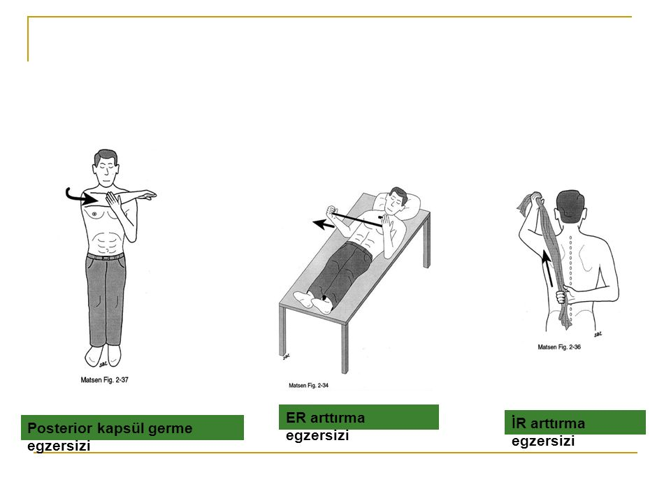 ER arttırma egzersizi İR arttırma egzersizi Posterior kapsül germe egzersizi
