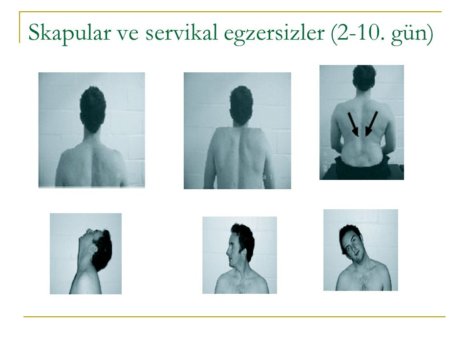 Skapular ve servikal egzersizler (2-10. gün)