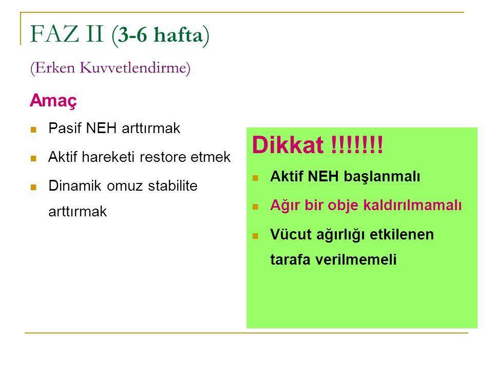 FAZ II (3-6 hafta) (Erken Kuvvetlendirme)