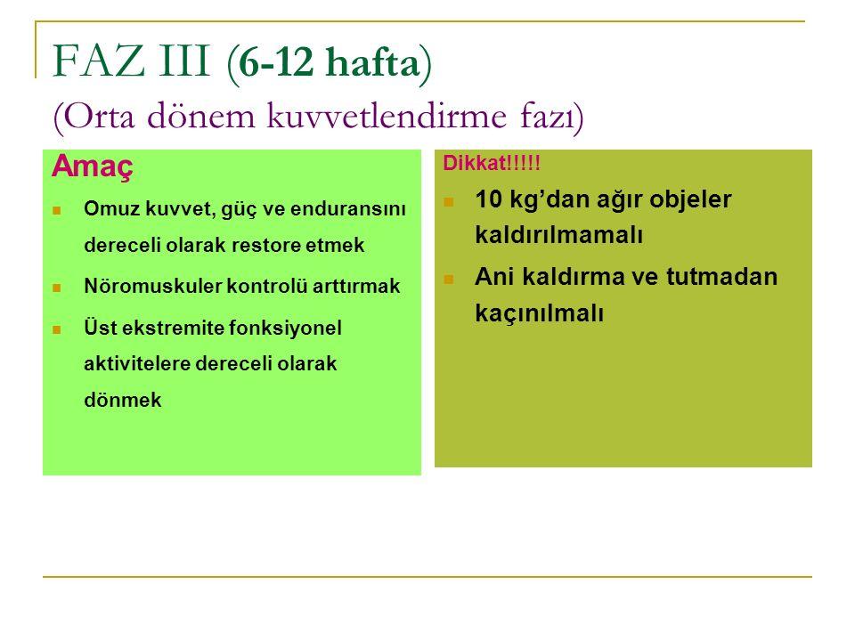 FAZ III (6-12 hafta) (Orta dönem kuvvetlendirme fazı)