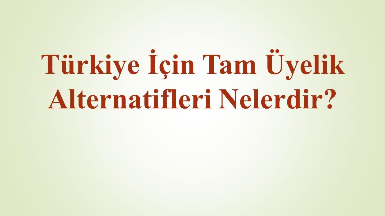 Türkiye İçin Tam Üyelik Alternatifleri Nelerdir