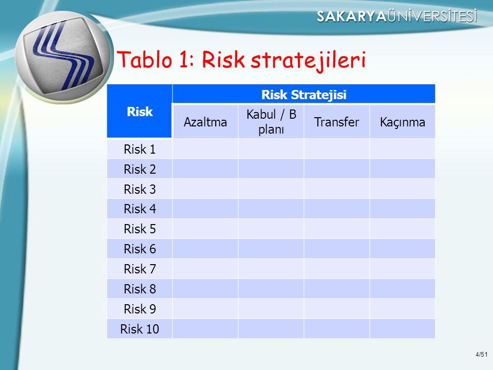 Tablo 1: Risk stratejileri