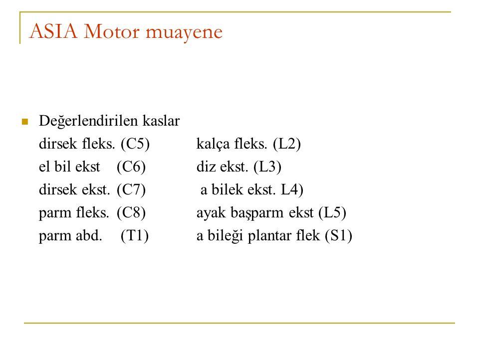 ASIA Motor muayene Değerlendirilen kaslar