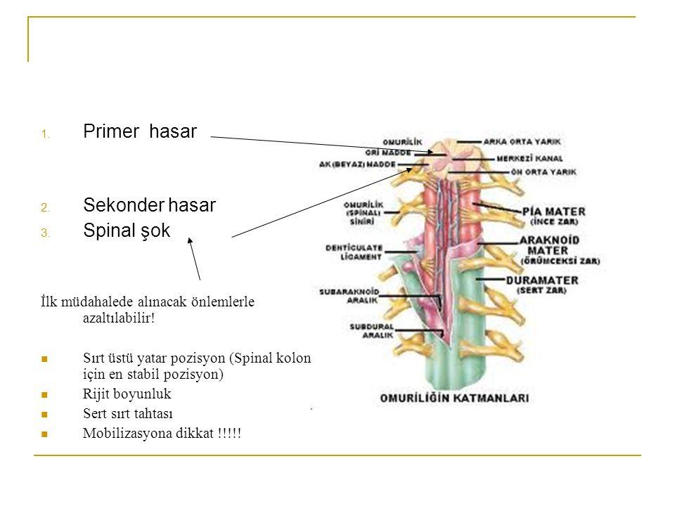 Primer hasar Sekonder hasar Spinal şok