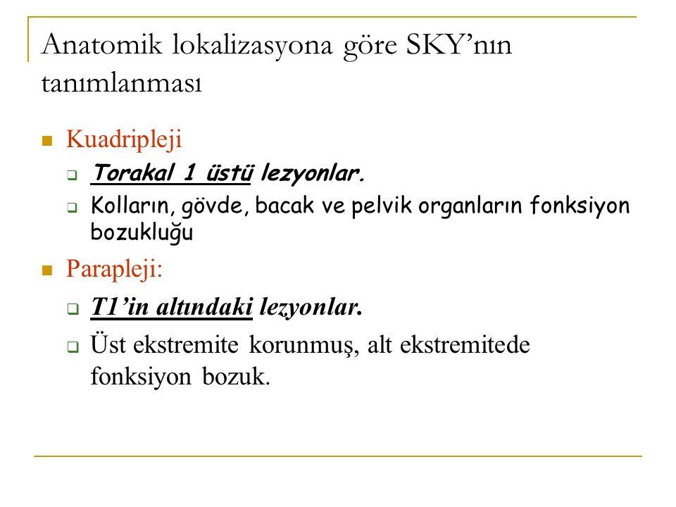 Anatomik lokalizasyona göre SKY'nın tanımlanması
